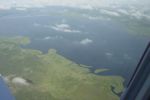 An aerial view of eastern shoreline of Lake Jesup, where algae blooms have recently occurred.